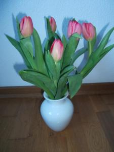 Danke für die Blumen (und Schoggi) © privat
